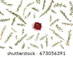 frame with branches  leaves and ... | Shutterstock . vector #673056391