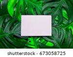 blank white greeting card paper ... | Shutterstock . vector #673058725