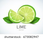 fresh lime slice with leaves... | Shutterstock .eps vector #673082947