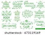 vector set  green hand drawn... | Shutterstock .eps vector #673119169