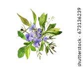watercolor drawing wild flowers ... | Shutterstock . vector #673136239