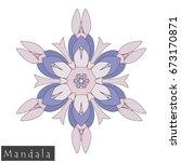floral symmetrical geometrical... | Shutterstock .eps vector #673170871