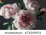 decoration artificial peonies... | Shutterstock . vector #673243921