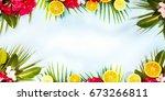 summer flower background | Shutterstock . vector #673266811
