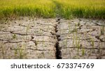 dry crack earth at rice field | Shutterstock . vector #673374769