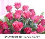 red rose | Shutterstock . vector #673376794