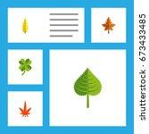 flat icon leaves set of alder ... | Shutterstock .eps vector #673433485