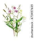 watercolor drawing bouquet of... | Shutterstock . vector #673457635
