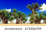 awesome baobabs in african... | Shutterstock . vector #673506709