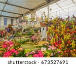 london  uk   may 25  2017  rhs... | Shutterstock . vector #673527691