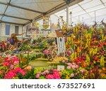 london  uk   may 25  2017  rhs... | Shutterstock . vector #673527691