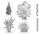 hand drawn set of trees and... | Shutterstock .eps vector #673603147