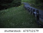 lightning bugs also known as... | Shutterstock . vector #673712179