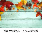 beautiful maple leaves on... | Shutterstock . vector #673730485