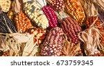 Decorative Corn On The Autumn...