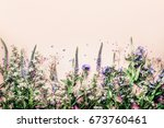 various herbs and flowers on... | Shutterstock . vector #673760461