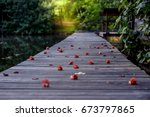 The Old Gray Wooden Bridge Wit...