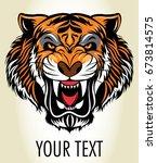 tiger head | Shutterstock .eps vector #673814575