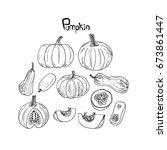 hand drawn sketch style black... | Shutterstock .eps vector #673861447