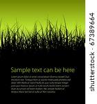 green vector grass background... | Shutterstock .eps vector #67389664