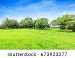green field and blue sky | Shutterstock . vector #673923277