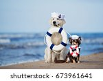 two dogs posing with life buoys ... | Shutterstock . vector #673961641