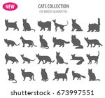 cat breeds icon set flat style... | Shutterstock .eps vector #673997551
