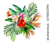 tropical flowers.watercolor | Shutterstock . vector #674002594