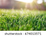 grass field in sunny day | Shutterstock . vector #674013571