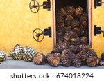 tequila production pina husks... | Shutterstock . vector #674018224