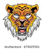 angry tiger head. | Shutterstock .eps vector #674029201