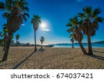 Palm Trees On The Beach Of Port ...
