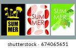 vector set of bright summer... | Shutterstock .eps vector #674065651