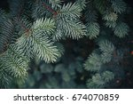 Small photo of Fir tree brunch close up. Shallow focus. Fluffy fir tree brunch close up. Christmas wallpaper concept. Copy space.