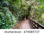 a walking trail between trees...   Shutterstock . vector #674085727