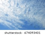 paragliders in the sky nepal ... | Shutterstock . vector #674093401