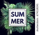 green summer tropical... | Shutterstock . vector #674118241