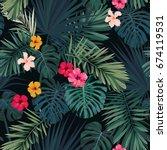 seamless hand drawn tropical... | Shutterstock . vector #674119531
