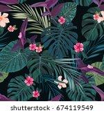 seamless botanical exotic... | Shutterstock . vector #674119549