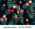 seamless hand drawn tropical... | Shutterstock . vector #674119555