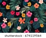 seamless hand drawn tropical... | Shutterstock . vector #674119564