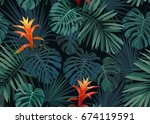 hand drawn seamless tropical... | Shutterstock . vector #674119591