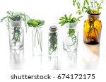 homeopathy. medicinal herbs in...   Shutterstock . vector #674172175