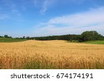 Small photo of Agriculture, agronomy and farming background. Summer countryside landscape with field of wheat on a foreground. Wisconsin, Midwest USA. Harvest concept.