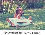 humorous brown dog flying on... | Shutterstock . vector #674314084