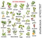 best natural herbal... | Shutterstock .eps vector #674317507