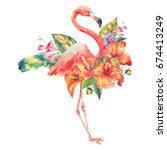 watercolor pink flamingo and... | Shutterstock . vector #674413249