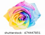 Colorful Rose In Rainbow Color...