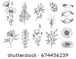 vector collection of hand drawn ... | Shutterstock .eps vector #674456239