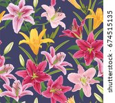 seamless of colorful lilies... | Shutterstock .eps vector #674515135